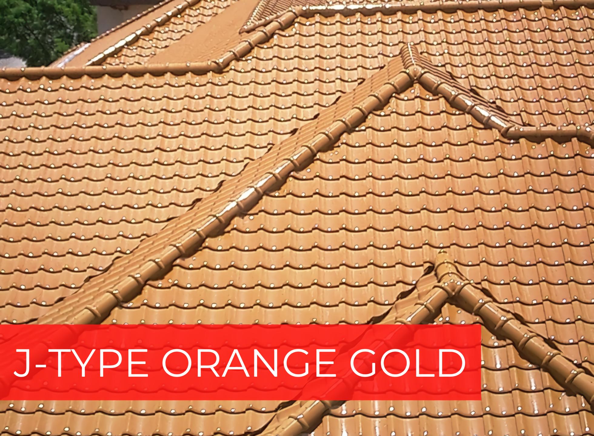 J-TYPE ORANGE GOLD photo